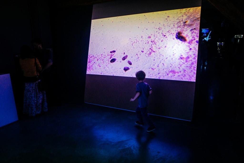 Biennale 16 maja_mm1375