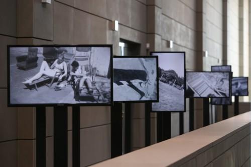 wro biennale 2015_II_koch image 0331